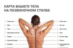 карта Вашего тела на позвоночном столбе