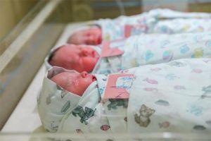 Ростовская область заняла 40-е место в национальном рейтинге рождаемости