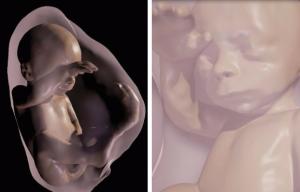 Родители смогут увидеть малыша в виртуальной реальности еще до рождения