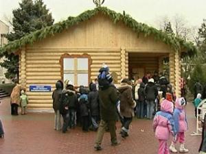 В Ростове открылась главная городская елка
