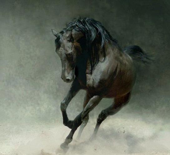 Если мужчина Лошадь...