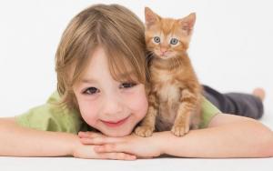 Из-за кошки ребенок может стать глупее