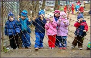 В мэрии Ростова пообещали увеличить количество мест в детских садах
