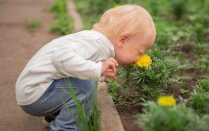 До пяти лет запахи не влияют на поведение детей