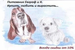 Питомник Евграф и К.
