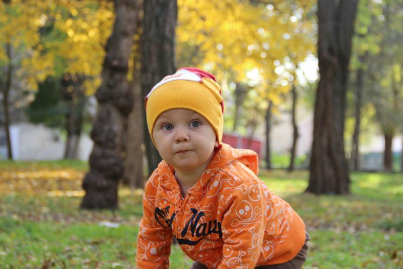 Наш Ромашка очень любит осень!!